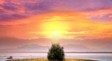 Ireal de frumoasa, natura - Cecil Whitt