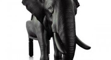 Fotoliul zeului Ganesha de Maximo Riera