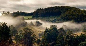 In cautarea frumusetii prin Australia cu Nandakumar Narasimhan