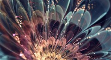 Silvia Cordedda inventeaza flori din fractali