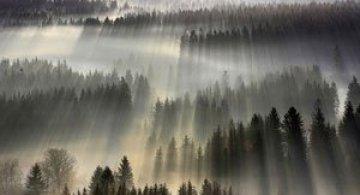 Prin ceata muntilor, cu Boguslaw Strempel