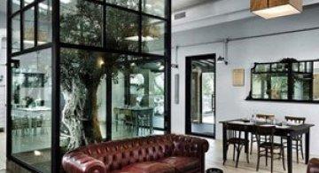 Restaurantul din Roma in care a crescut un copac
