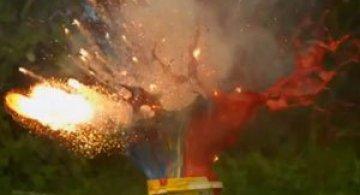 Video: Explozii de culoare in gradina