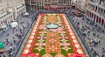 Covorul de flori de la Bruxelles