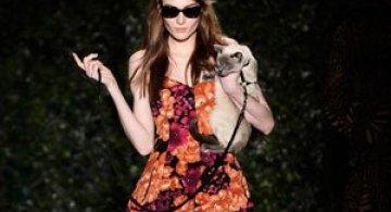 Catwalk - Cu pisica pe podium la Saptamana modei