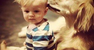 Iubirea dintre caini si copii, in 13 fotografii
