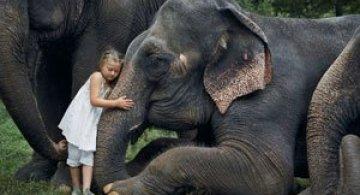 28 de super poze cu fetita care iubeste toate animalele