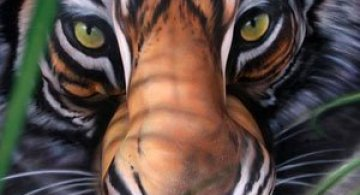 Imagini incredibile cu body painting si iluzii optice