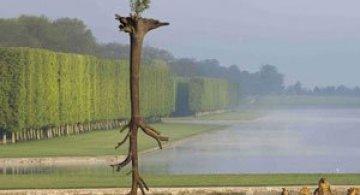 Sculpturi-copaci, in gradina de la Versailles
