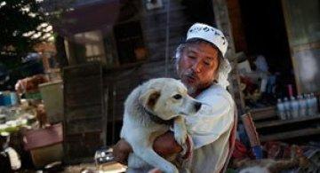 A salvat 500 de animale din ruinele de la Fukushima