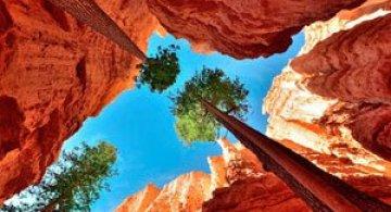 Ce lume frumoasa! Lonely Planet's Beautiful World