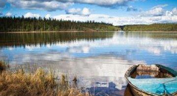 Frumusetea tinuturilor sub-arctice, cu Dave Brosha