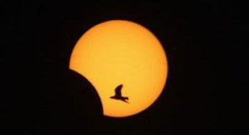 3 noiembrie: Eclipsa hibrid de luna