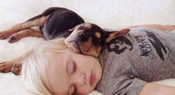 Ora de culcare, cu un baietel si cainele lui