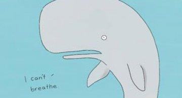 Ilustratii simpatice cu animale, de Liz Climo