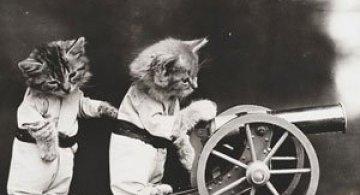 Poze cu pisici si catei de-acum un secol