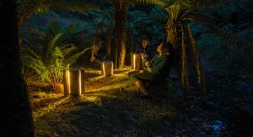 Creeaza cu lumina care-i lipseste: Buturugi luminoase, cu Duncan Meerding