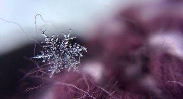 Magia fulgilor de nea in poze de poveste