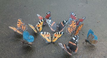Oximoron artistic: Insecte si pasari metalice, cu John Brown