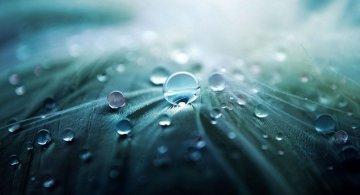 Imnul ploii: Cantecul picaturilor cazute din cer