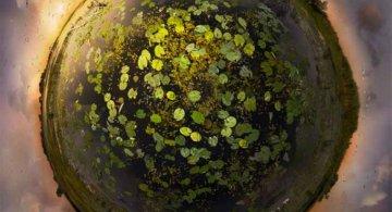 Lumi miniaturale: O poezie vizuala, de Catherine Nelson