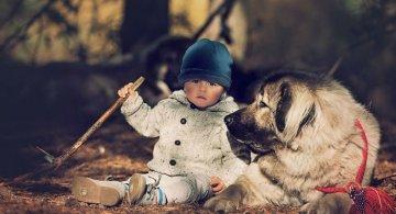 Conexiunea dintre om si animale, in imagini sugestive