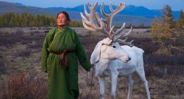 Oameni si reni, in inima Mongoliei