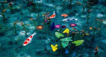 Uimitoarea Japonie, in sezonul ploios