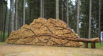 Creatii ingenioase cu lemne taiate