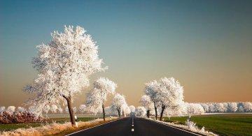 Perfectiunea naturii, in poze sublime