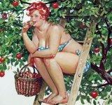 Din picanteriile anilor '50: Voluptoasa Hilda, in ilustratii simpatice