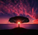 Puterea de a merge inainte: Citate care te inspira sa traiesti viata din plin