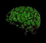 10+1 Execitii ciudate pentru creier care ne fac mai destepti