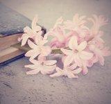 Cele mai frumoase carti de dragoste pe care le vei citi pe nerasuflate