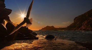 30 Lucruri fascinante despre lumea inconjuratoare