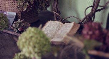Din cantul sufletelor mari: Cele mai frumoase citate din literatura