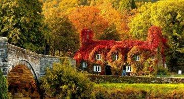 Bucuria culorilor de toamna, in toate colturile lumii