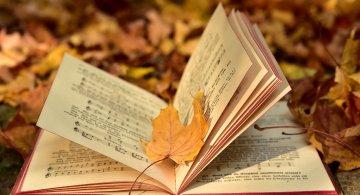 Cele mai frumoase poezii romanesti puse pe muzica