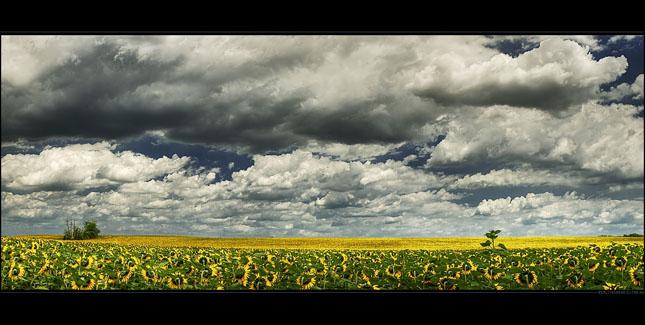 70 de panorame uluitoare - Poza 14