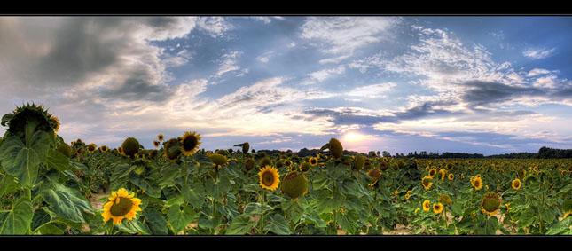 70 de panorame uluitoare - Poza 47