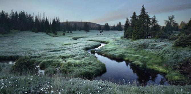 Padurea din Bavaria in 12 fotografii superbe - Poza 4