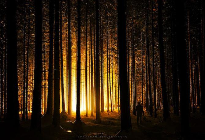 Padurea din Bavaria in 12 fotografii superbe - Poza 8