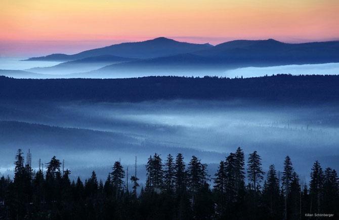 Padurea din Bavaria in 12 fotografii superbe - Poza 9