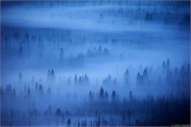 Padurea din Bavaria in 12 fotografii superbe - Poza 10