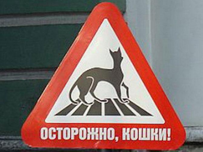 Ciudatenii rusesti: 15 semne de circulatie - Poza 11