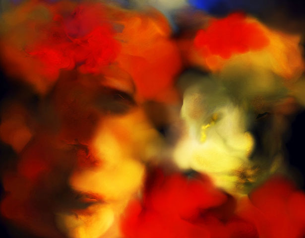 Jordan Dill: Curtea cu frunze - Poza 2