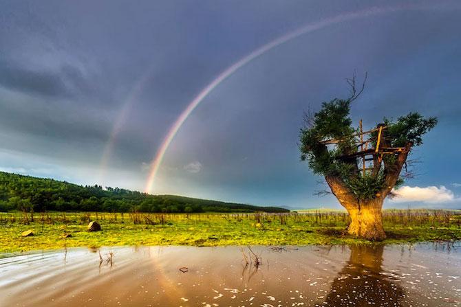21 de curcubee duble din lumea intreaga - Poza 8