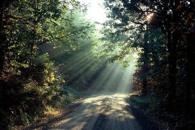 Ai vrea sa mergi pe aceste drumuri? - Poza 13