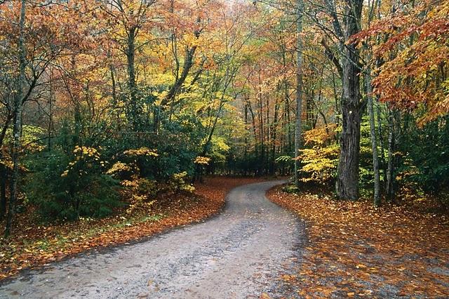Ai vrea sa mergi pe aceste drumuri? - Poza 16