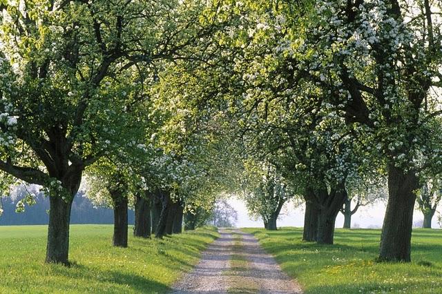 Ai vrea sa mergi pe aceste drumuri? - Poza 17